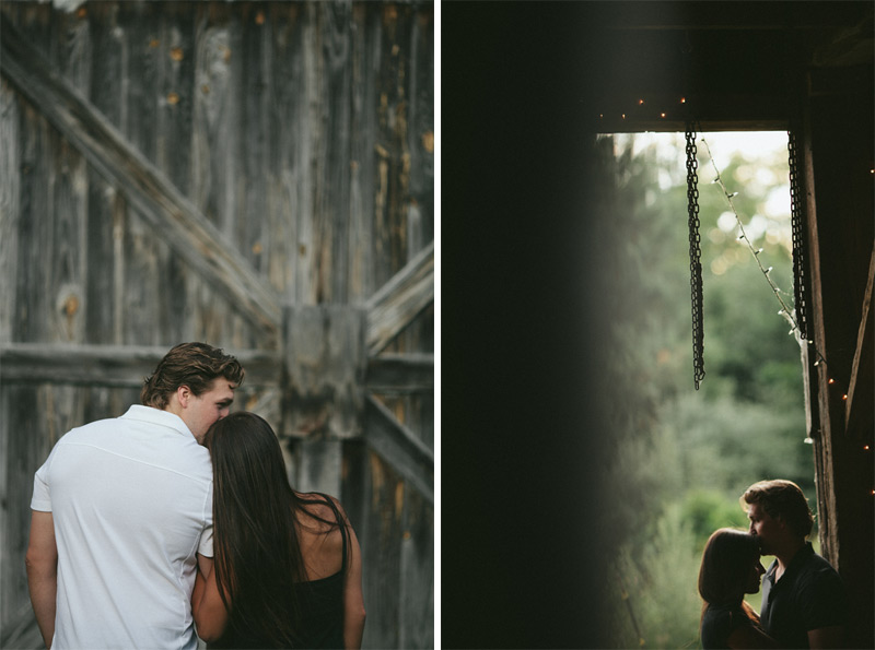 Beautiful Michigan Engagement Photography Pics